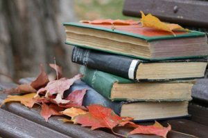 Friends' Fall Book Sale @ Otsego | Michigan | United States