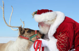 Reindeer & Santa @ Otsegto District  | Otsego | Michigan | United States
