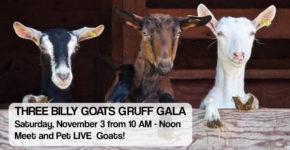 The Three Billy Goats Gruff Gala