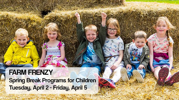 Spring Break Programs for Children